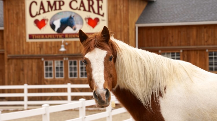Therapeutic Riding Program